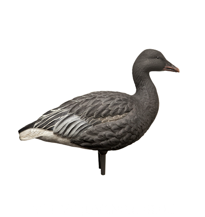 Avian-X Full Body Juvie Blue Goose (6 Pack)